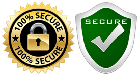 msp-secure-2